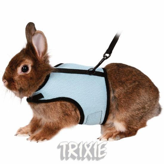 Как сделать шлейку своими руками для кролика